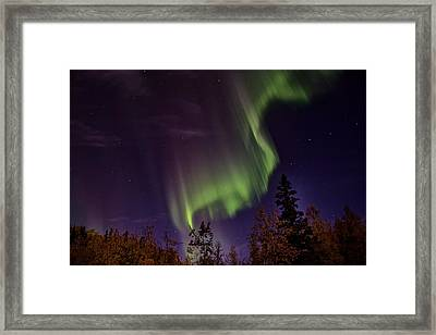 The September Aurora Fairbanks Alaska Framed Print