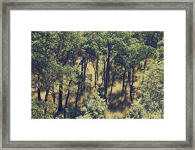 The Shades And Shadows Framed Print by Laurie Search