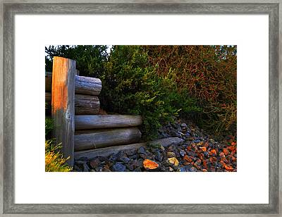 Framed Print featuring the photograph The Shadows Of The Sun  by Naomi Burgess