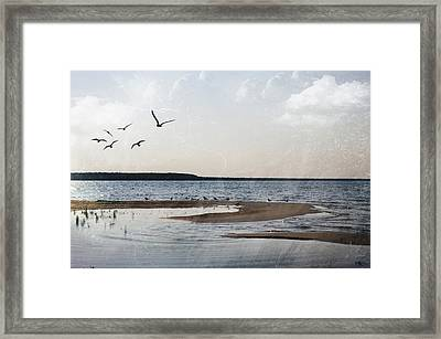 The Shallows At Whitefish Bay Framed Print