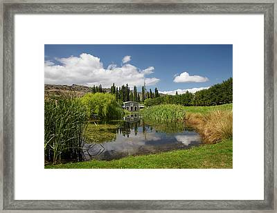 The Shed And Pond, Northburn Vineyard Framed Print by David Wall