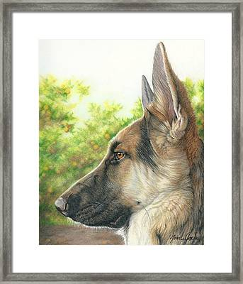 The Shepherd Watching Framed Print