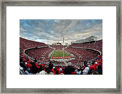 The Shoe Framed Print