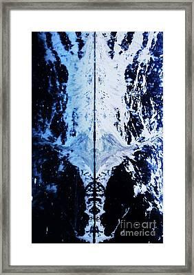 The Shroud Of Glacier Bay Framed Print by Marcus Dagan