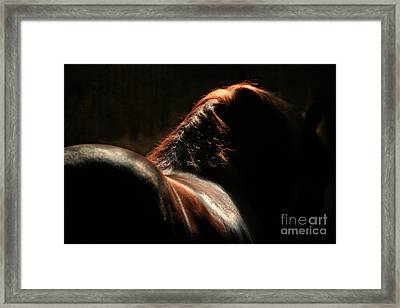 The Silhouette Framed Print by Angel  Tarantella