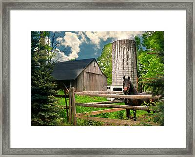 The Silo Horse Framed Print by Diana Angstadt