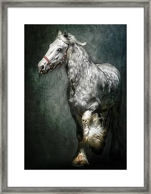 The Silver Gypsy Framed Print