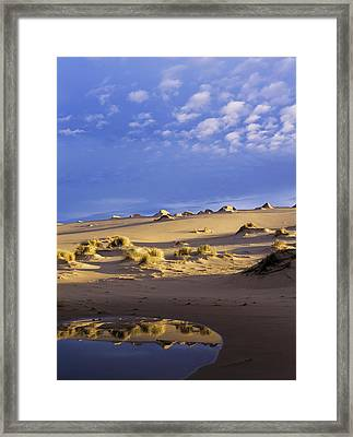 The Sky Is Reflected In An Ephemeral Framed Print by Robert L. Potts