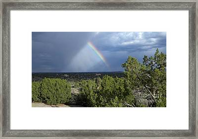 The Sky's The Limit Framed Print by Polly Anna