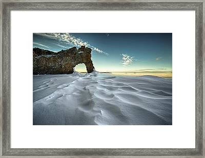 The Sleeping Giants Sea Lion Framed Print by Jakub Sisak