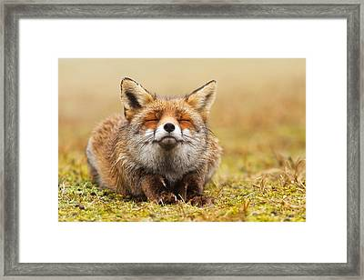 The Smiling Fox Framed Print by Roeselien Raimond