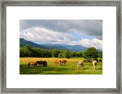 The Smokies Framed Print by Jay Nodianos