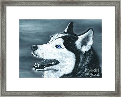 The Snow Bandit Framed Print by Gareth Andrew