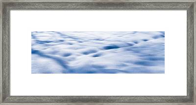 The Snow Carpet - Featured 2 Framed Print by Alexander Senin