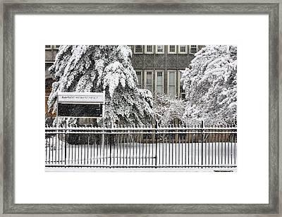 The Snow Day Framed Print