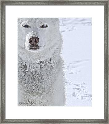 The Snow Queen - Print Framed Print by May Finch