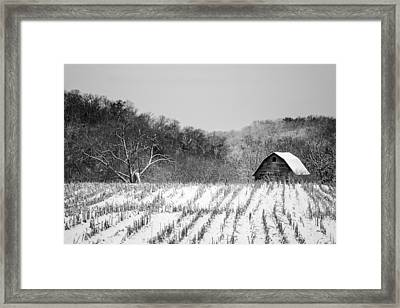 The Snowy Aftermath In Black And White Framed Print
