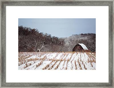 The Snowy Aftermath Framed Print