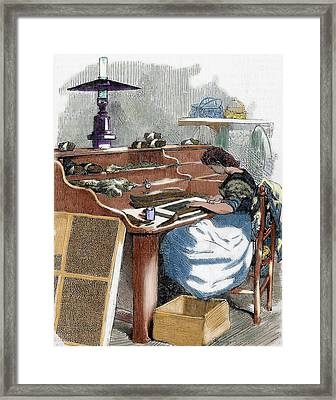 The Snuff Industry Framed Print by Prisma Archivo