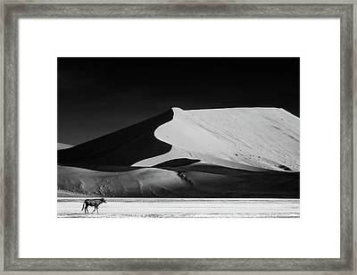 The Solitary Framed Print