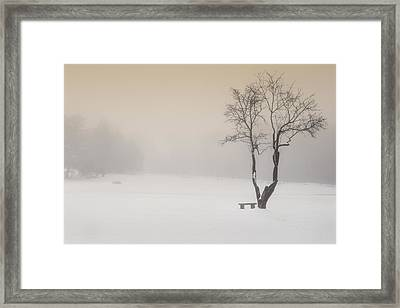 The Solitude Of Winter Framed Print by Bill Wakeley