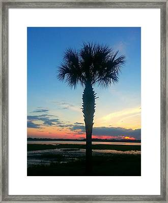 Framed Print featuring the photograph The Solo Palm by Joetta Beauford