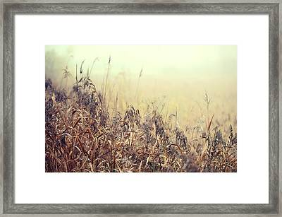 The Song Of Autumnal Grass Framed Print by Jenny Rainbow