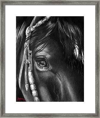 the Soul of a Horse Framed Print