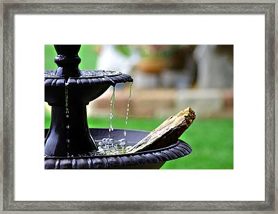 The Sound Of Contentment Framed Print