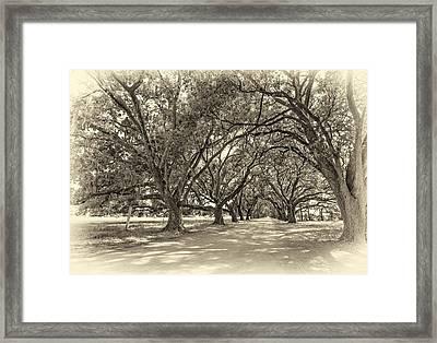 The Southern Way Sepia Framed Print by Steve Harrington