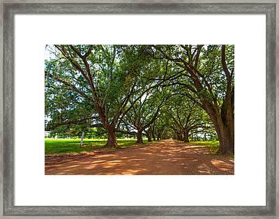 The Southern Way  Framed Print by Steve Harrington