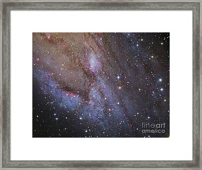The Southwest Spiral Arm Of Messier 31 Framed Print by Robert Gendler