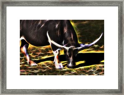 The Sparks Of Water Buffalo Framed Print