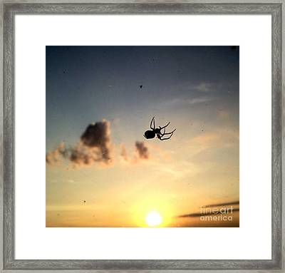 The Spider And The Fly Framed Print by Luther Fine Art