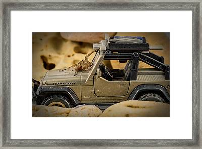The Spider Series II Framed Print by Marco Oliveira