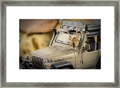 The Spider Series IIi Framed Print by Marco Oliveira