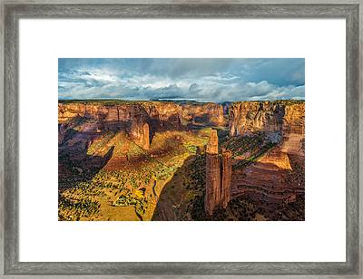The Spider's Lair Framed Print by Guy Schmickle