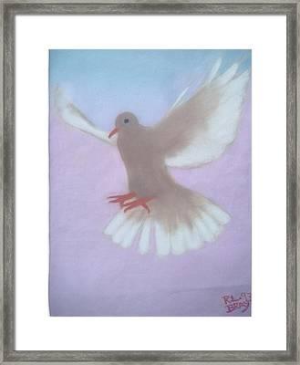 The Spirit Descendedlike A Dove. Framed Print