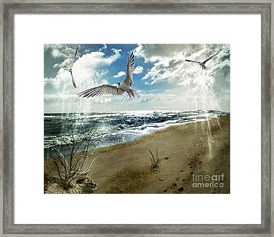 The Spirit Of Flight Framed Print