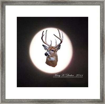 The Spirit Of Goldie Framed Print by Mary Dreher