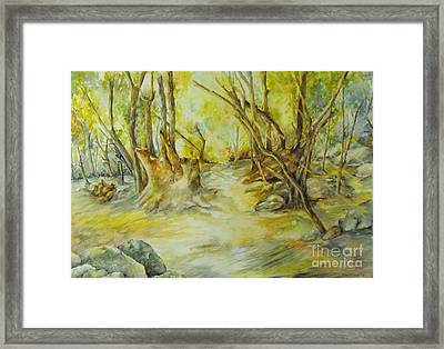 The Spirit Of The Forest II Framed Print