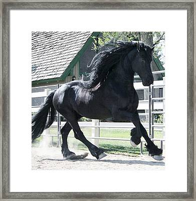 The Spirit Of The Friesian Framed Print