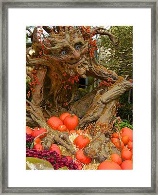 The Spirit Of The Pumpkin Framed Print by Venetia Featherstone-Witty