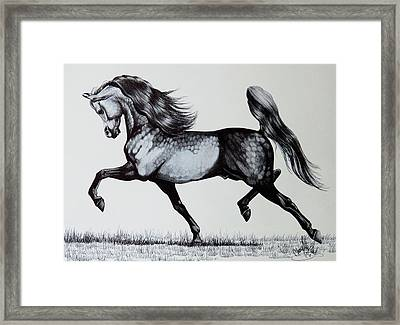 The Spirited Arabian Horse Framed Print by Cheryl Poland
