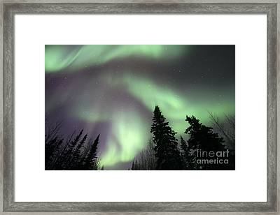 The Spirits Are Dancing Framed Print by Priska Wettstein