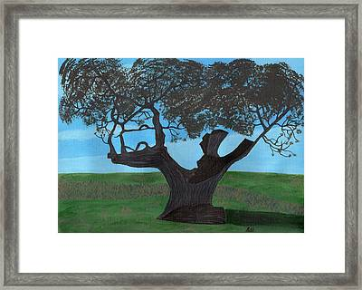 The Split Tree - Bradgate Park Framed Print by Bav Patel