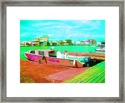 The Sponge Fab Framed Print by Mike Podhorzer