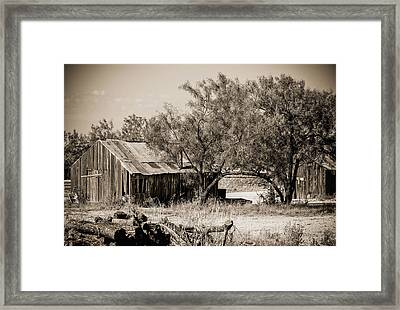 The Spread Framed Print by Amber Kresge