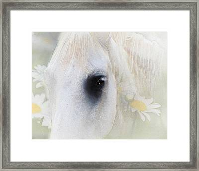 The Spring Gift Giver Framed Print by Georgiana Romanovna
