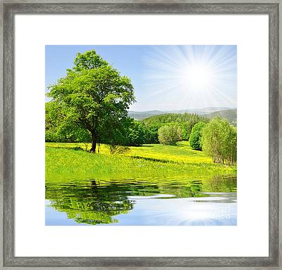 The Spring Landscape Framed Print by Boon Mee